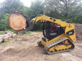 Marietta Bobcat Tree Removal
