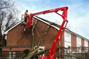 complete tree service alpharetta
