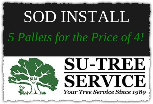 Sod Install Discount Su-Tree Service