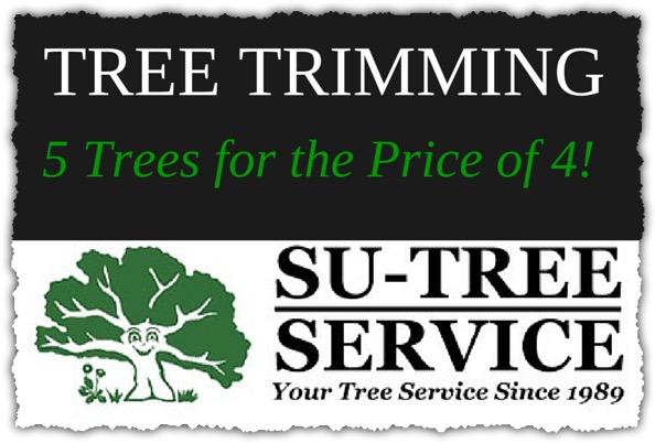 Tree Trimming Su-Tree Service